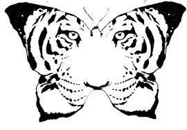 tigerfaced butterfly design tattooshunt com