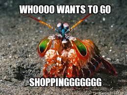 Gay Seal Meme Generator - meme creator gay drama shrimp meme generator at memecreator org