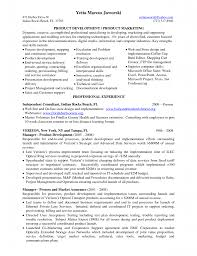 Territory Manager Cover Letter Sample Cover Letter For Business Development Manager Gallery