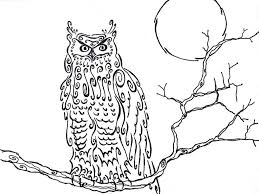owl coloring book pages u2014 fitfru style printable owl coloring