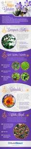 4 cold weather plants for a winter garden an infographic winter