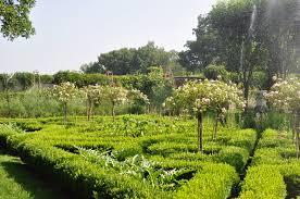 perennial garden vegetables landscape ct digs