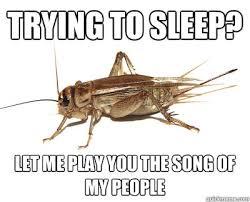 Crickets Meme - cricket song memes quickmeme