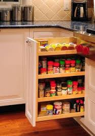 Spice Drawers Kitchen Cabinets by Custom Condominium Kitchen Kitchen Design Pictures Pictures Of