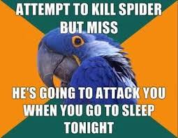 Funny Spiders Memes Of 2017 - best 25 funny spider memes ideas on pinterest spider meme