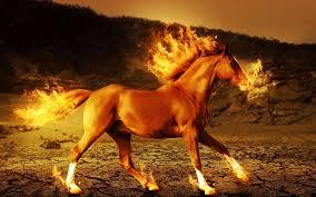 3d horse background wallpaper 18575 baltana