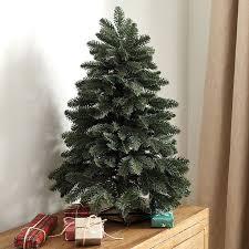 pinterest u0027teki 25 u0027den fazla en iyi noble fir tree fikri seyahat