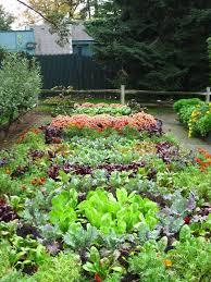 15 herb u0026 vegetable garden ideas page 7 of 15 yard surfer