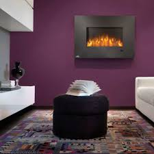 Napoleon Electric Fireplace Napoleon Efl32h 32 Inch Indoor Electric Fireplace With 5 000 Btus
