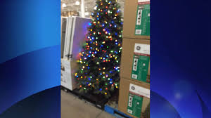 christmas splendi costco christmas tree christmastree lights
