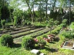 unique raised vegetable garden layout aero garden raised