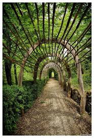 decoration jardin marocain les 20 meilleures idées de la catégorie arches de jardin sur
