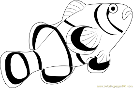 clown fish coloring free fish coloring pages