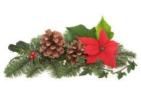 christmas flowers decorations the design inspirationalist