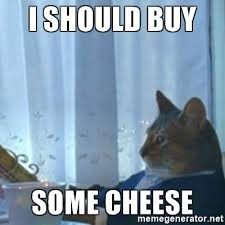 Cat Buy A Boat Meme - i should buy some cheese i should buy a boat meme meme generator