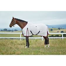 horse summer sheets in australia from horseland