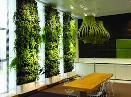 Interior Plant Wall 610 Best Make It Green Images On Pinterest Vertical Gardens