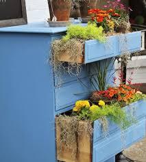 spring gardening ideas browzer