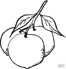 two oranges one whole and the other cut it pieces coloring page