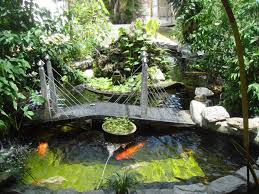 Backyard Fish Ponds by Pretty And Small Backyard Fish Pond Ideas At Decor Landscape