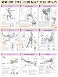 Chest Workout Dumbbells No Bench Great Site With Different Strength Workouts For The Various Parts