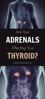 ernährung bei nebennierenschwäche understanding adrenal gland fatigue part iv cortisol levels are