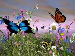 flowers and butterflies wallpaper has sprung