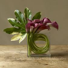 18 Contemporary And Elegant Vase Flower Guide Calla Lilies Calla Lilies Lilies And Calla Lily