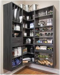 cool portable kitchen pantry organizers wood furniture stunning