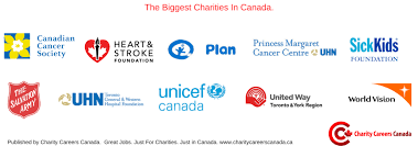 size matters the non profit organizations in canada