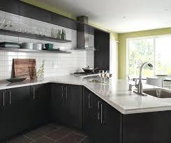 dark gray kitchen cabinets u2013 fitbooster me