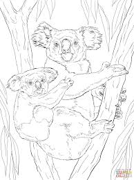 koala with baby coloring page free printable coloring pages