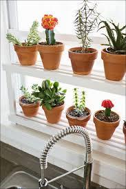 Kitchen Garden Window Lowes by Kitchen Used Garden Windows For Sale Diy Garden Window Lowes