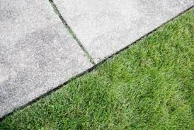 Moss Cleaner For Patios How To Clean A Mildew Stained Sidewalk Home Guides Sf Gate