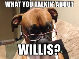 Boxer Meme - what you talkin about willis vaguely surprised boxer meme