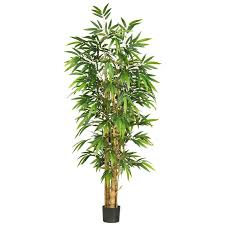 47 best silk bamboo trees images on bamboo tree silk