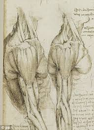 leonardo da vinci u0027s drawings 100s of years ahead of his time