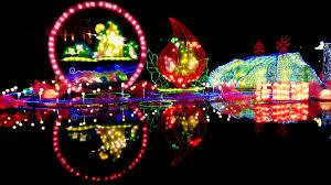 lantern light festival south florida finds