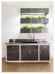indoor herb walls leap from restaurants to home kitchens