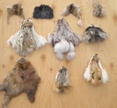fur and leather scraps