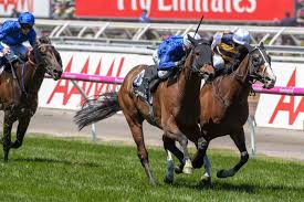lexus cars melbourne oceanographer secures melbourne cup start with lexus stakes win