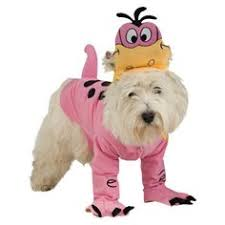 Female Dog Halloween Costumes Pet Halloween Costumes Medium Female Dog Costumes