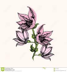 composition florale avec des roses composition florale avec le bouquet des fleurs roses illustration