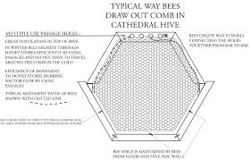 How To Build Top Bar Hive Backyardhive Com Cathedral Hive
