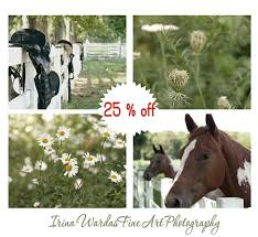 set of 4 rustic farm photos horse and country photography decor