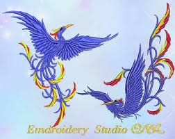 birds of paradise etsy