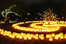 Scottsdale Botanical Gardens Las Luminarias Marshmallows Margaritas