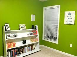 we u0027re u201cgreen u201d u2026at painting smashley in the house