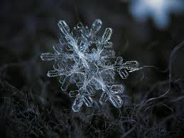 snowflake draft 2