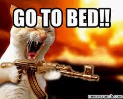 T Rex Bed Meme - meme bed 28 images forever alone bed by tara89 meme center bed